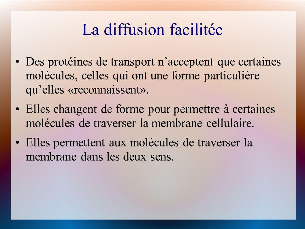 La diffusion facilitée Des protéines de transport nacceptent que certaines molécules, celles qui ont une forme particulière quelles «reconnaissent».