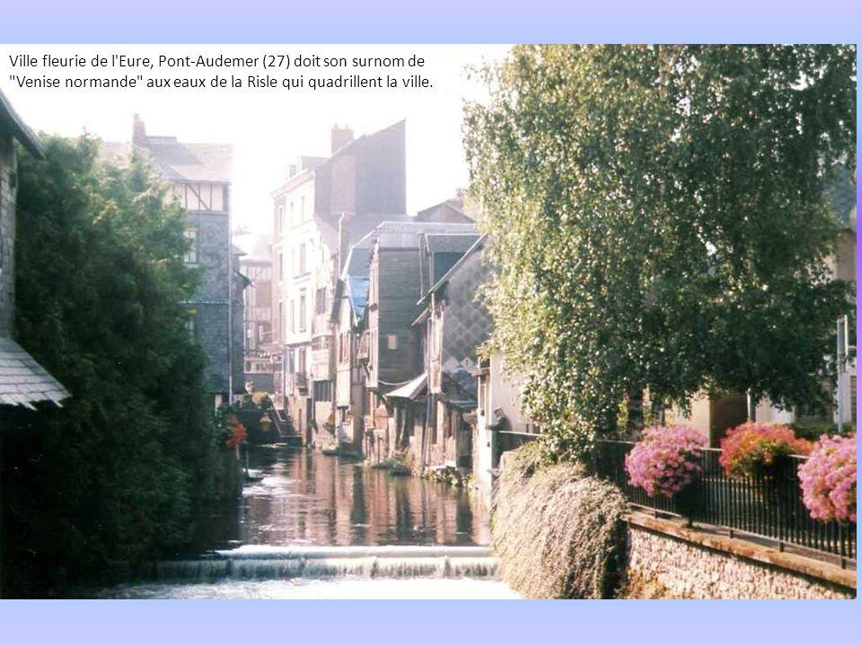 Niort (79) a découvrir à pied, à vélo ou en barque la coulée verte qui s'étend le long des berges aménagées de la Nièvre, du centre ville de Niort au