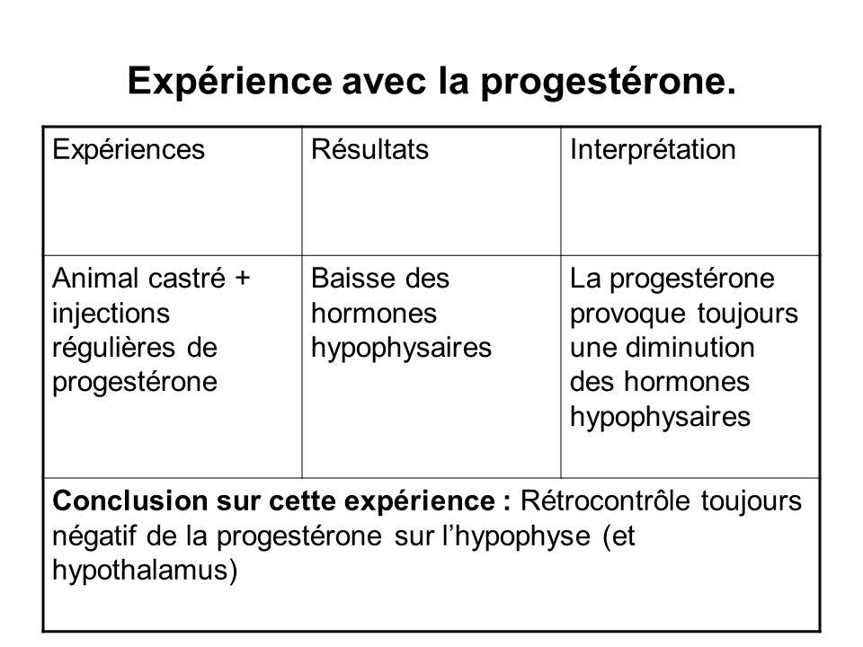 Expérience avec la progestérone. ExpériencesRésultatsInterprétation Animal castré + injections régulières de progestérone Baisse des hormones hypophys