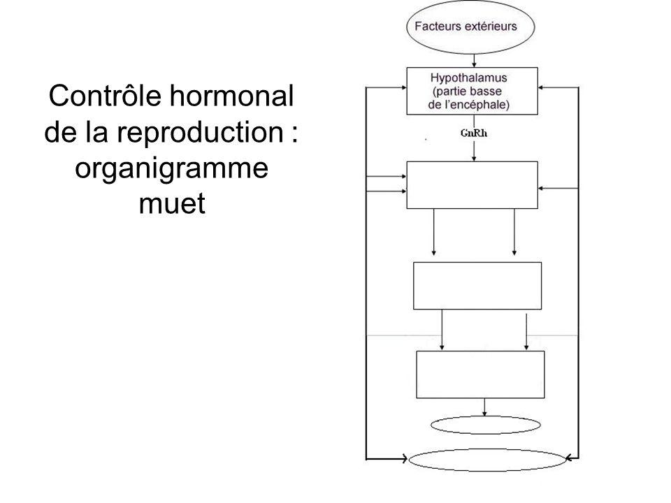 Contrôle hormonal de la reproduction : organigramme muet