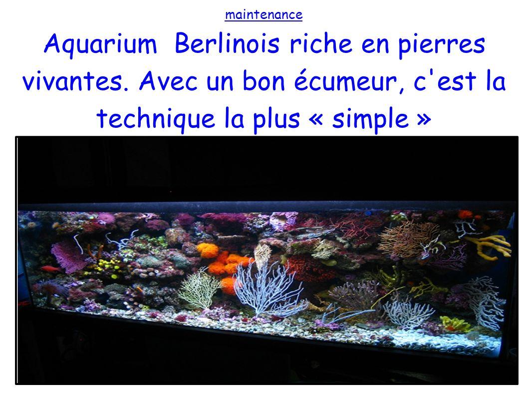 maintenance Aquarium Berlinois riche en pierres vivantes. Avec un bon écumeur, c'est la technique la plus « simple »