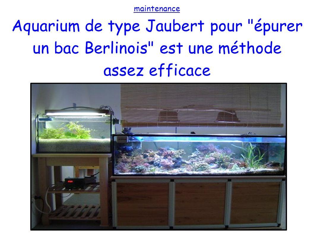 maintenance Aquarium de type Jaubert pour