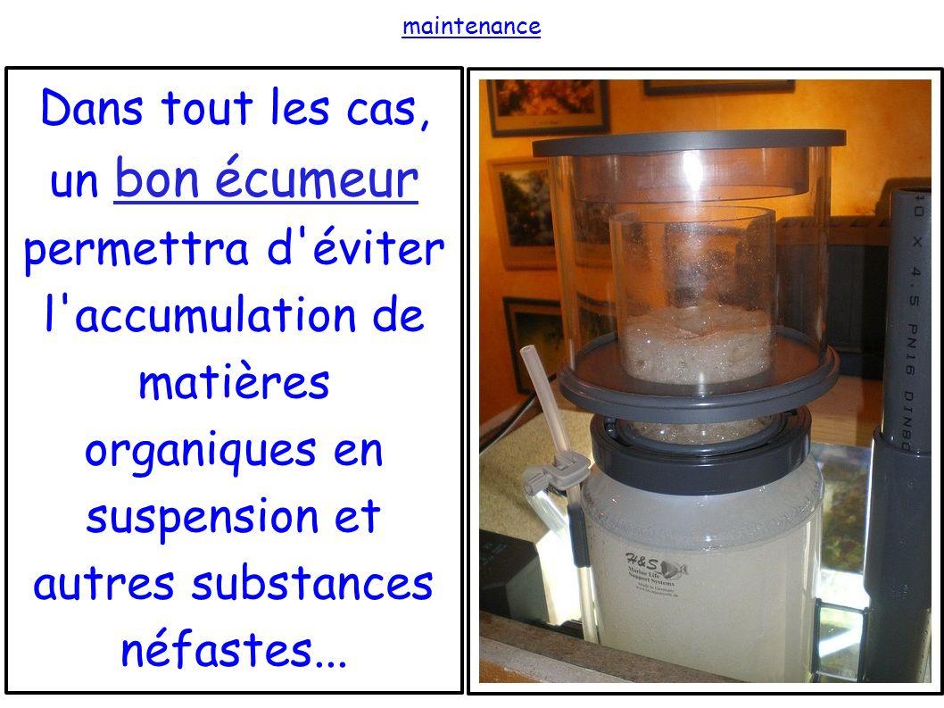 maintenance Dans tout les cas, un bon écumeur permettra d'éviter l'accumulation de matières organiques en suspension et autres substances néfastes...