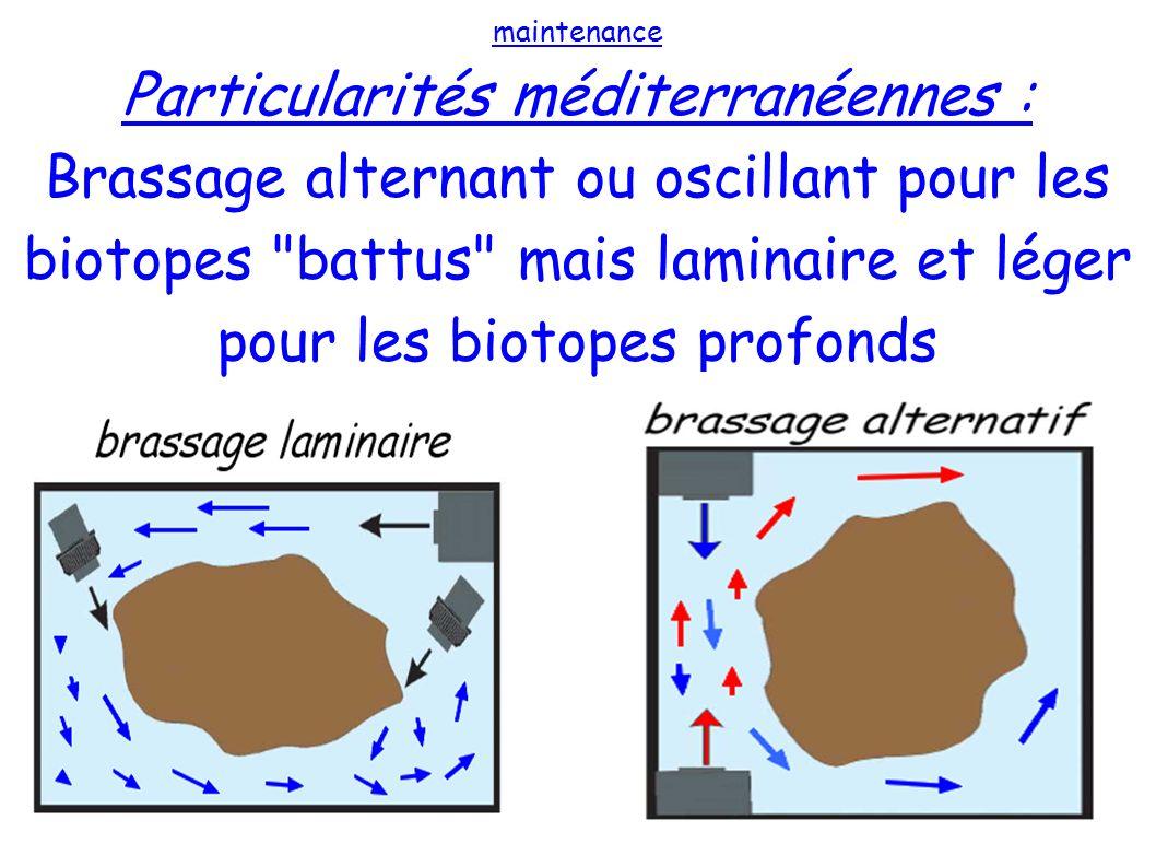 maintenance Particularités méditerranéennes : Brassage alternant ou oscillant pour les biotopes