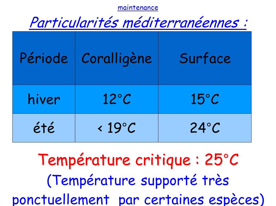 maintenance Particularités méditerranéennes : Température critique : 25°C (Température supporté très ponctuellement par certaines espèces) PériodeCora