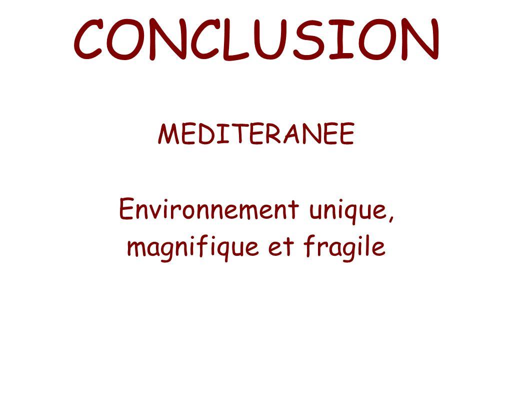 MEDITERANEE Environnement unique, magnifique et fragile