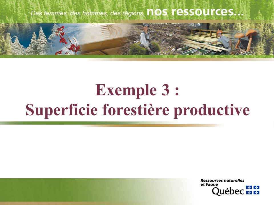 Exemple 3 : Superficie forestière productive