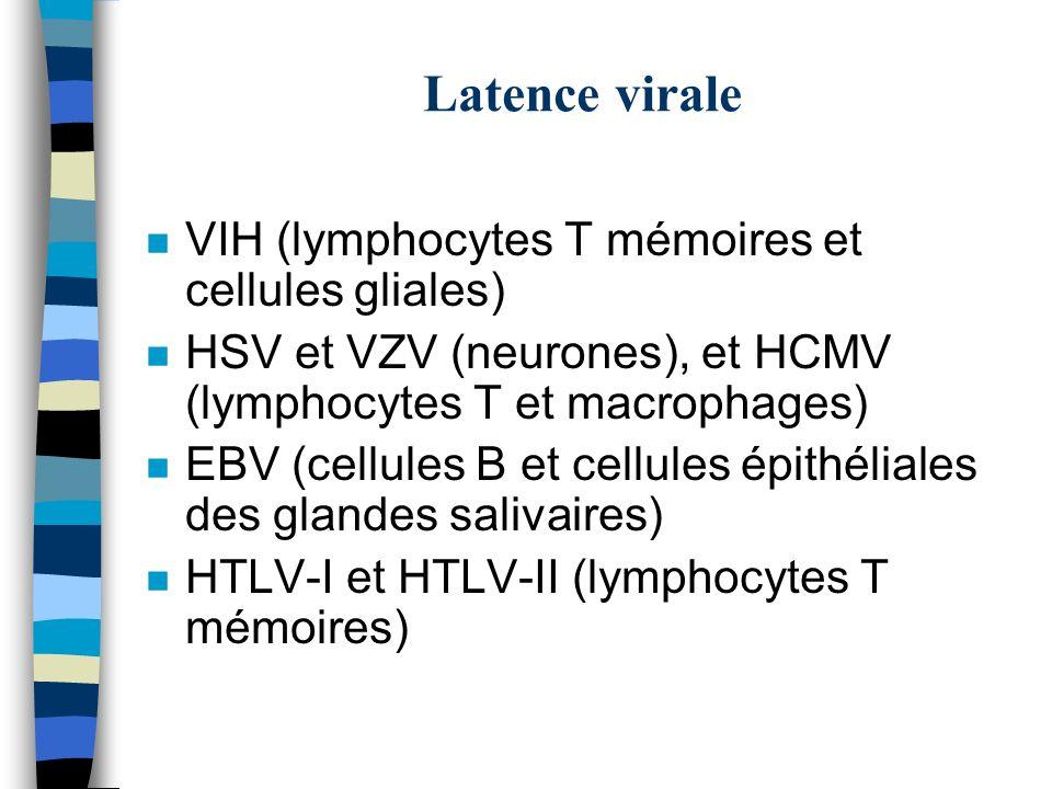 Latence virale n VIH (lymphocytes T mémoires et cellules gliales) n HSV et VZV (neurones), et HCMV (lymphocytes T et macrophages) n EBV (cellules B et
