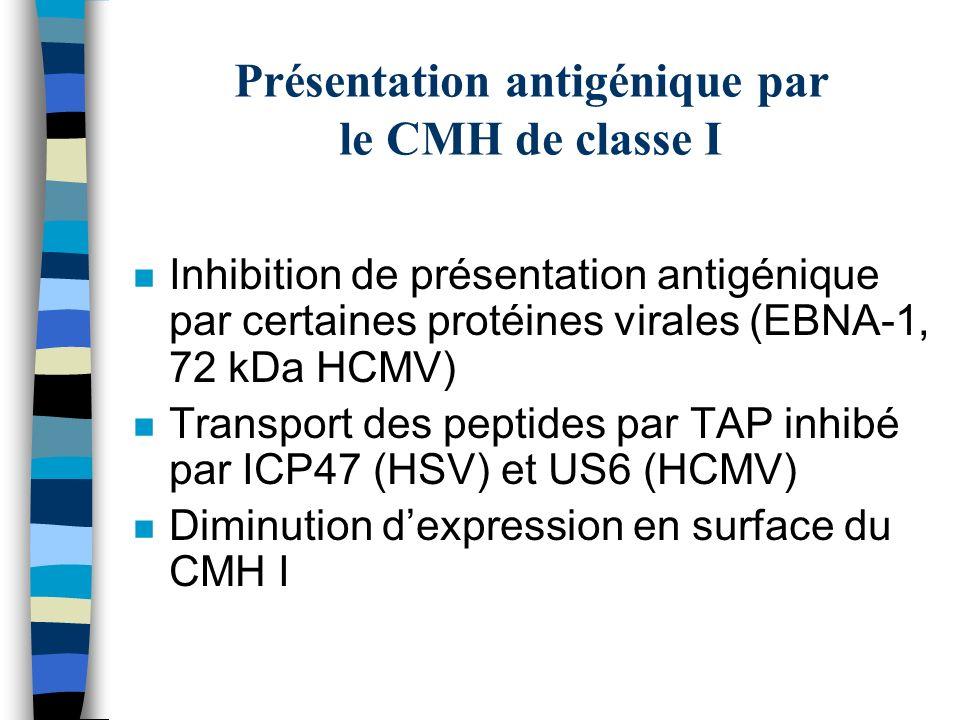 Présentation antigénique par le CMH de classe I n Inhibition de présentation antigénique par certaines protéines virales (EBNA-1, 72 kDa HCMV) n Trans