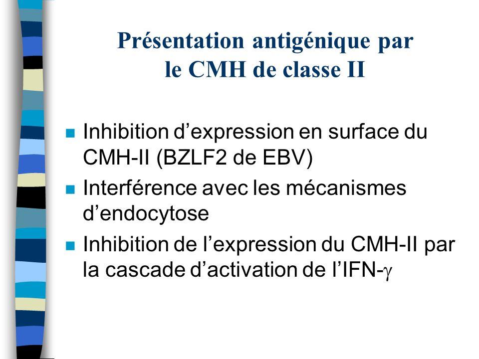 Présentation antigénique par le CMH de classe II n Inhibition dexpression en surface du CMH-II (BZLF2 de EBV) n Interférence avec les mécanismes dendo