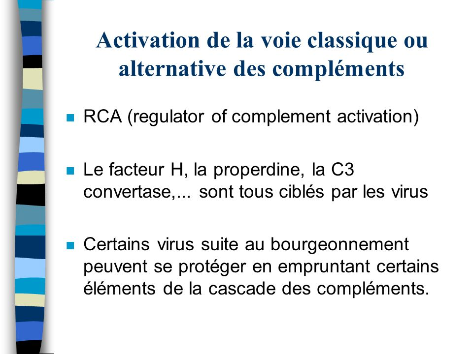 Activation de la voie classique ou alternative des compléments n RCA (regulator of complement activation) n Le facteur H, la properdine, la C3 convert