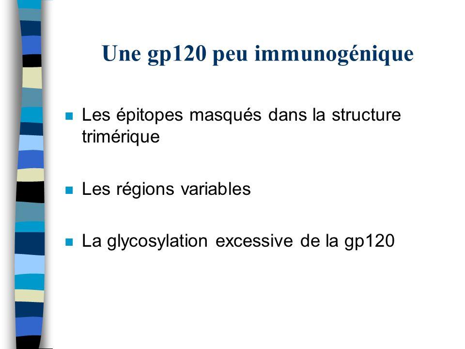 Une gp120 peu immunogénique n Les épitopes masqués dans la structure trimérique n Les régions variables n La glycosylation excessive de la gp120