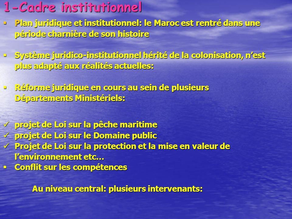 1-Cadre institutionnel Plan juridique et institutionnel: le Maroc est rentré dans une période charnière de son histoire Plan juridique et institutionn