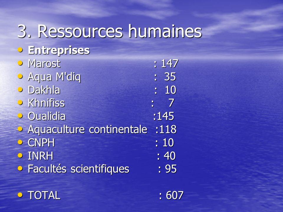 3. Ressources humaines Entreprises Entreprises Marost : 147 Marost : 147 Aqua M'diq : 35 Aqua M'diq : 35 Dakhla : 10 Dakhla : 10 Khnifiss : 7 Khnifiss