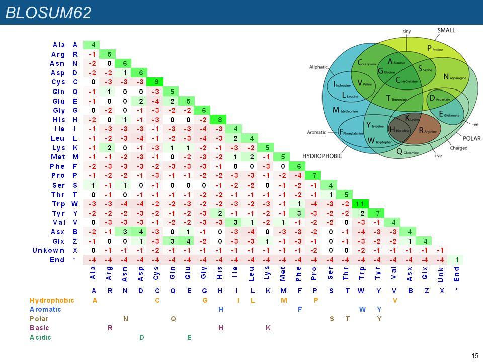 BLOSUM62 15