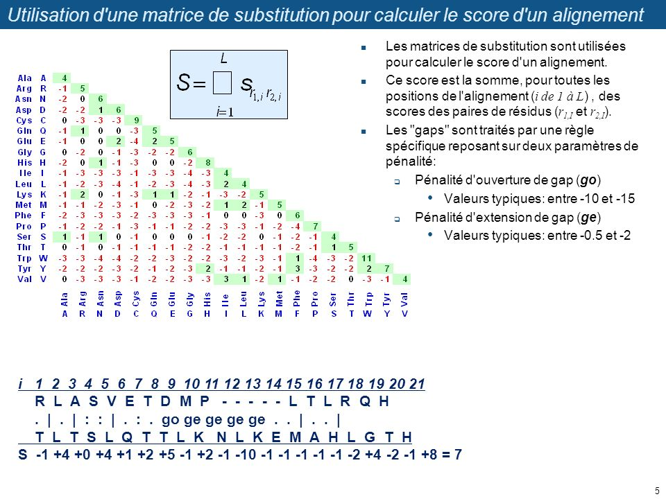 Construction d une matrice d alignement à partir d une matrice de substitutions Revenons à l exemple précédent.