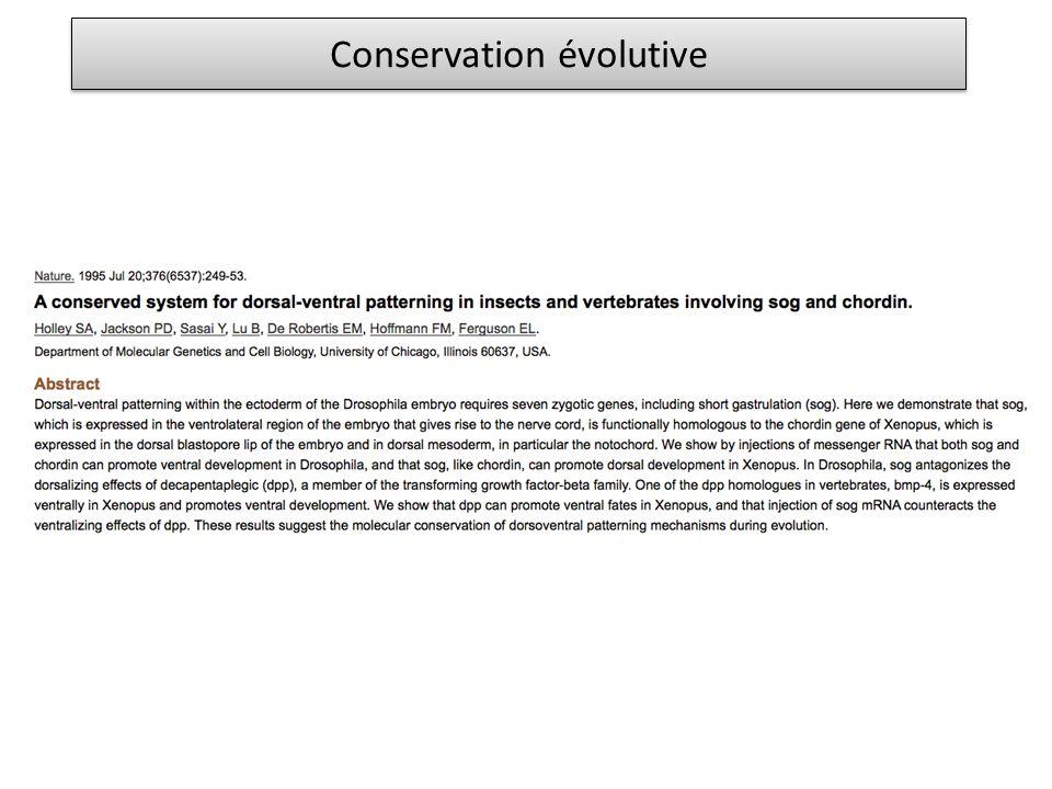 Conservation évolutive