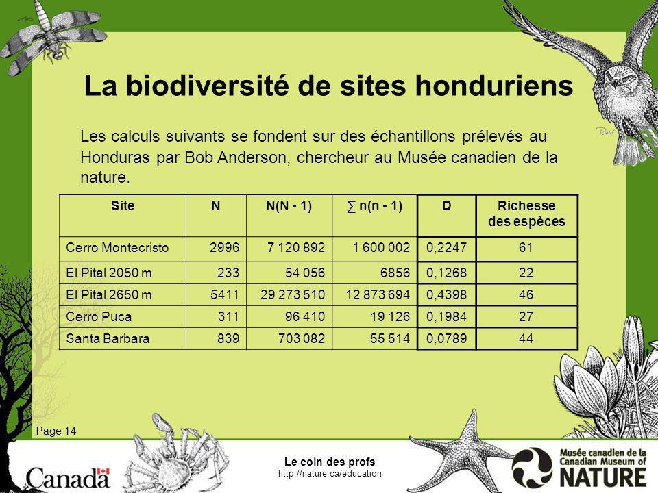 La biodiversité de sites honduriens Page 14 Les calculs suivants se fondent sur des échantillons prélevés au Honduras par Bob Anderson, chercheur au M