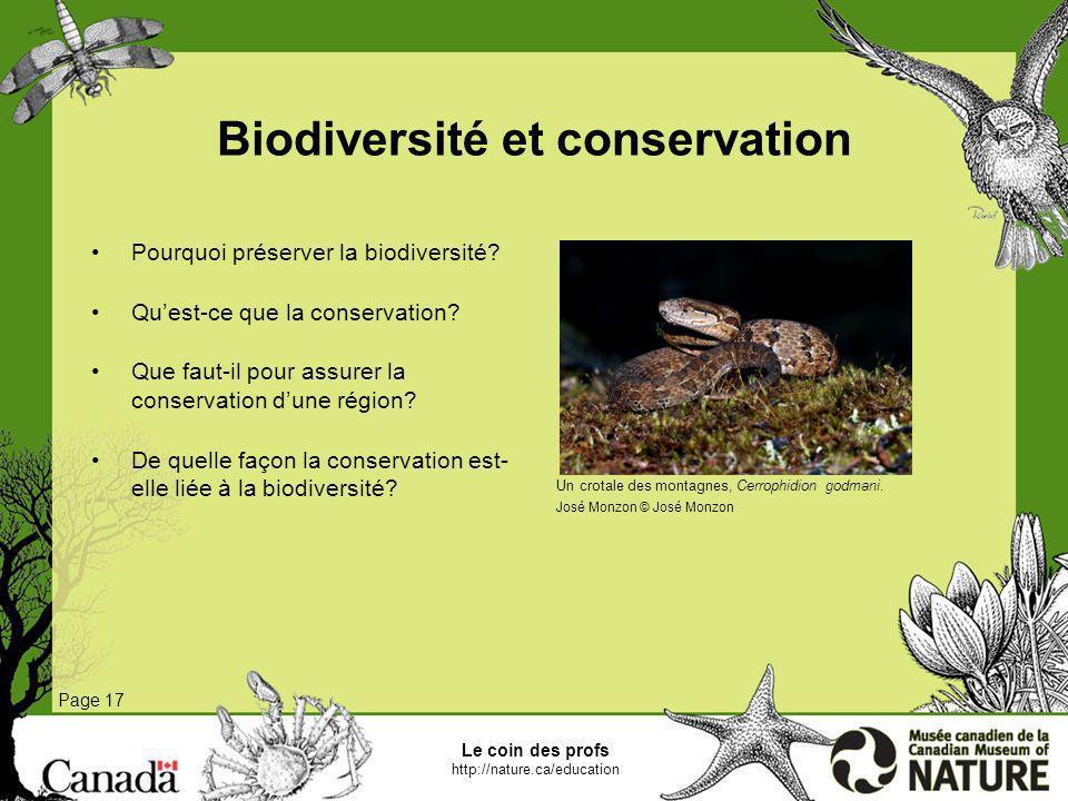 Biodiversité et conservation Page 17 Pourquoi préserver la biodiversité? Quest-ce que la conservation? Que faut-il pour assurer la conservation dune r