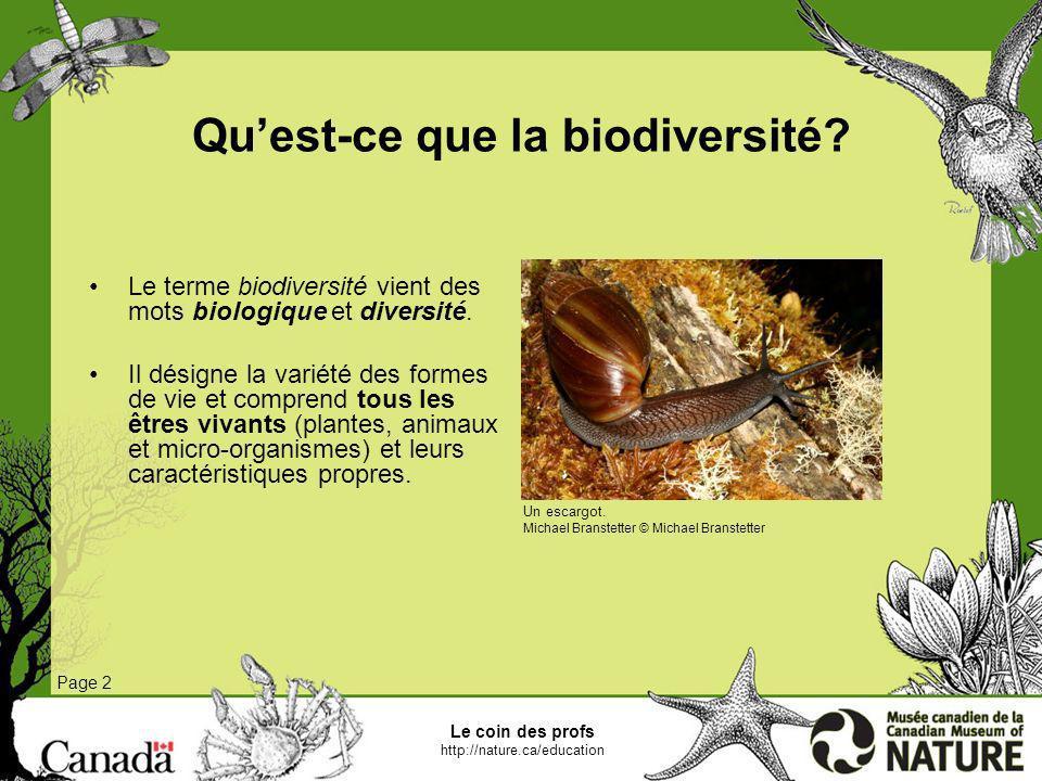 Le coin des profs http://nature.ca/education Quest-ce que la biodiversité? Page 2 Le terme biodiversité vient des mots biologique et diversité. Il dés