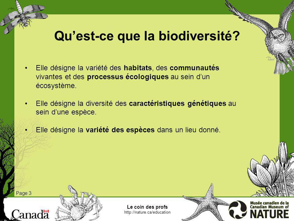 Le coin des profs http://nature.ca/education Page 3 Quest-ce que la biodiversité? Elle désigne la variété des habitats, des communautés vivantes et de