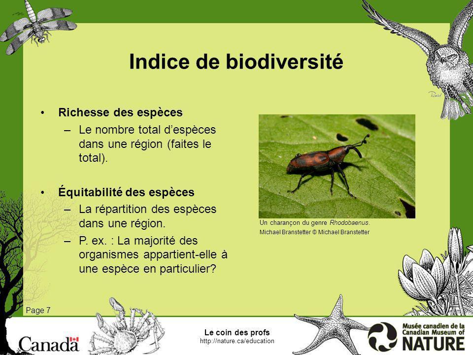 Le coin des profs http://nature.ca/education Page 7 Indice de biodiversité Richesse des espèces –Le nombre total despèces dans une région (faites le t