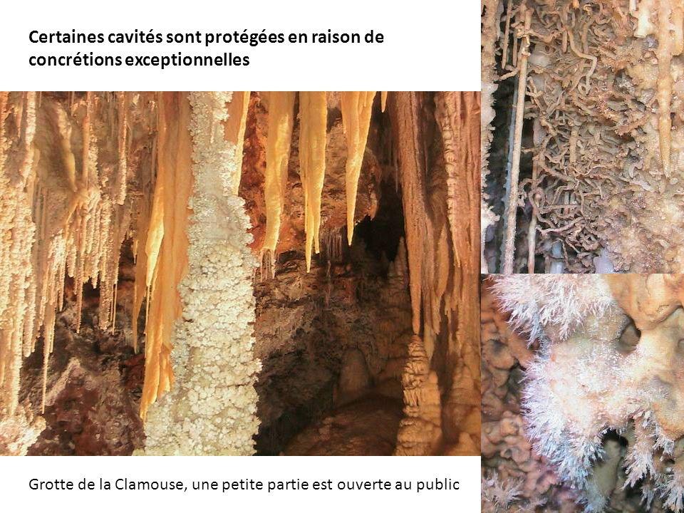 Certaines cavités sont protégées en raison de concrétions exceptionnelles Grotte de la Clamouse, une petite partie est ouverte au public
