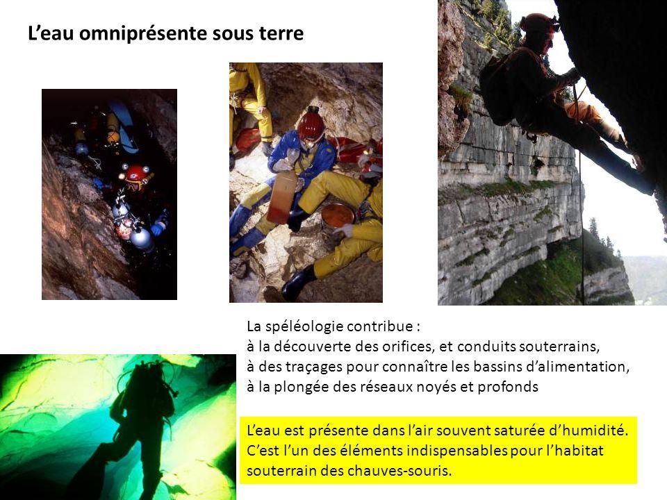 Leau omniprésente sous terre La spéléologie contribue : à la découverte des orifices, et conduits souterrains, à des traçages pour connaître les bassi