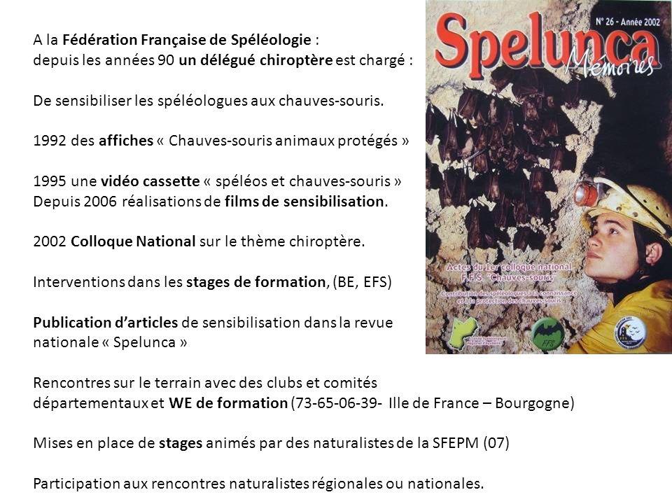 A la Fédération Française de Spéléologie : depuis les années 90 un délégué chiroptère est chargé : De sensibiliser les spéléologues aux chauves-souris