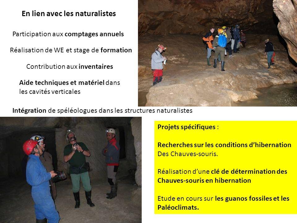 En lien avec les naturalistes Participation aux comptages annuels Réalisation de WE et stage de formation Contribution aux inventaires Projets spécifi