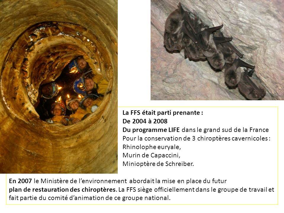 La FFS était parti prenante : De 2004 à 2008 Du programme LIFE dans le grand sud de la France Pour la conservation de 3 chiroptères cavernicoles : Rhi