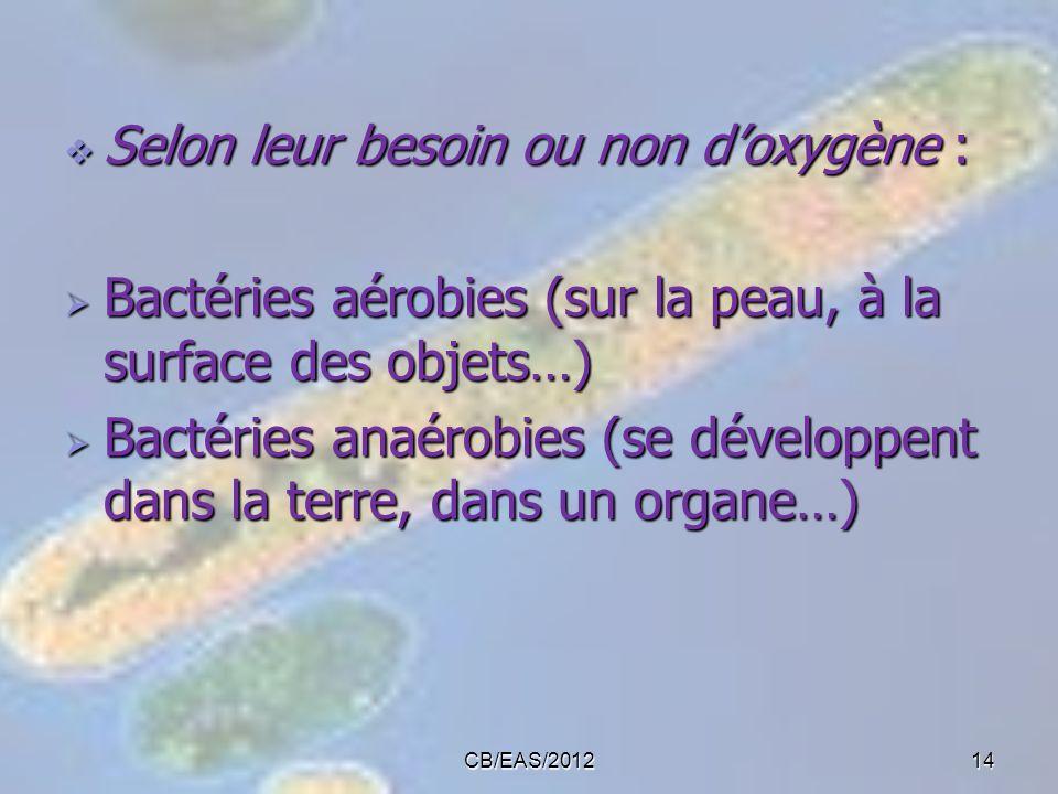 Selon leur besoin ou non doxygène : Selon leur besoin ou non doxygène : Bactéries aérobies (sur la peau, à la surface des objets…) Bactéries aérobies