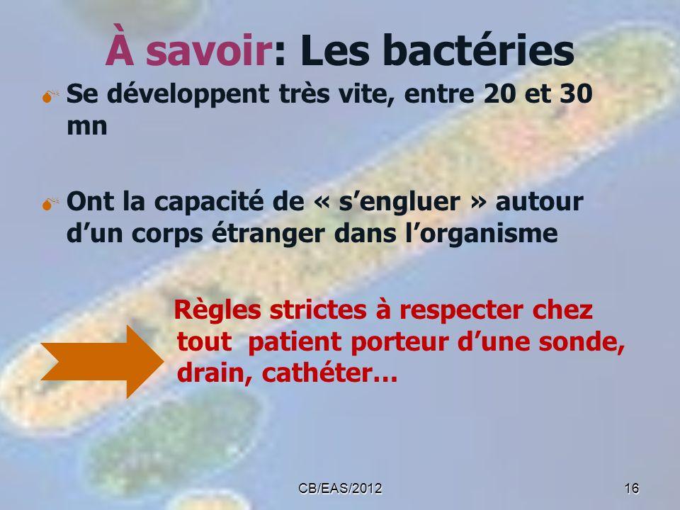 À savoir: Les bactéries Se développent très vite, entre 20 et 30 mn Ont la capacité de « sengluer » autour dun corps étranger dans lorganisme Règles s