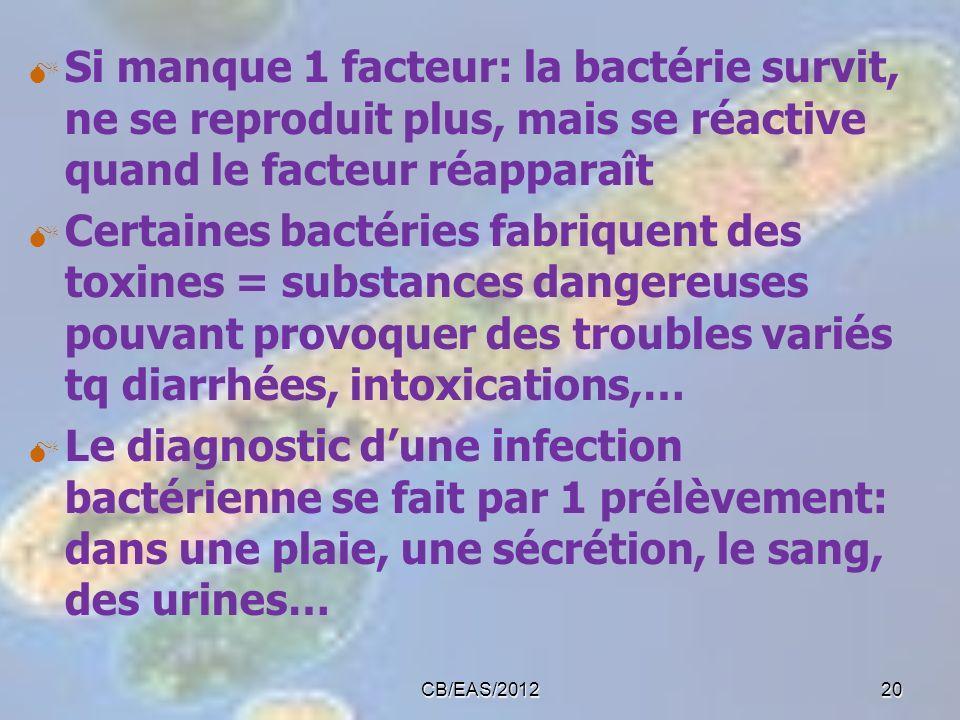 Si manque 1 facteur: la bactérie survit, ne se reproduit plus, mais se réactive quand le facteur réapparaît Certaines bactéries fabriquent des toxines