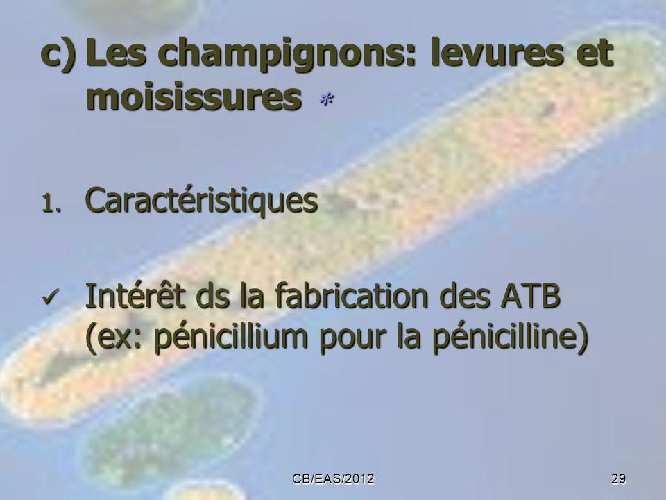 c)Les champignons: levures et moisissures c)Les champignons: levures et moisissures 1. Caractéristiques Intérêt ds la fabrication des ATB (ex: pénicil