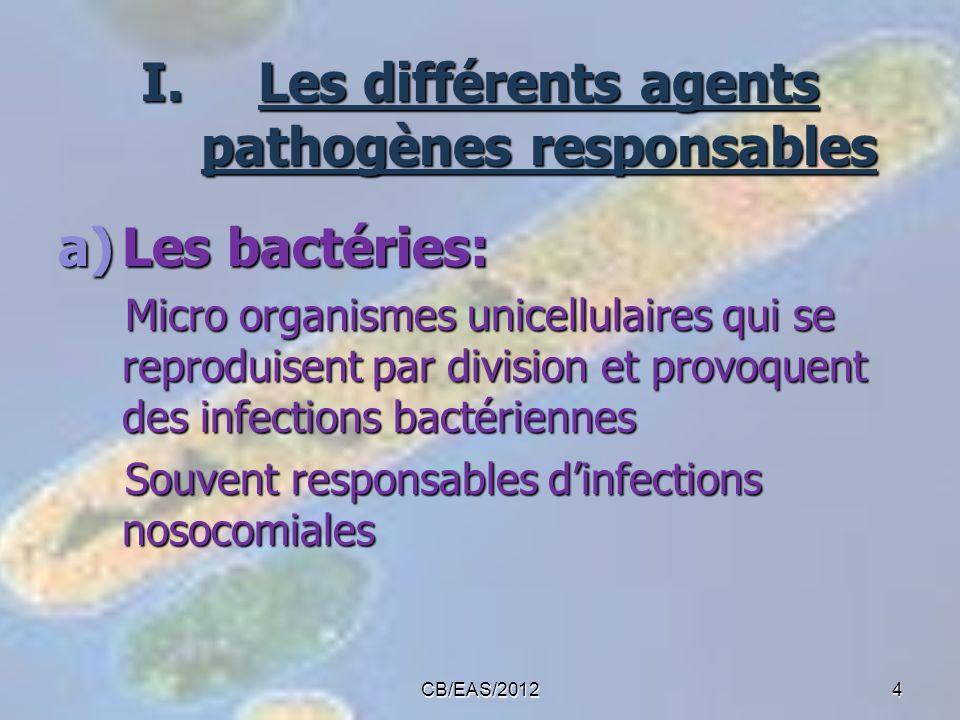 CB/EAS/20124 I.Les différents agents pathogènes responsables a)Les bactéries: Micro organismes unicellulaires qui se reproduisent par division et prov