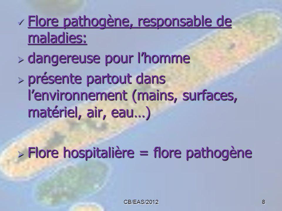 CB/EAS/20128 Flore pathogène, responsable de maladies: Flore pathogène, responsable de maladies: dangereuse pour lhomme dangereuse pour lhomme présent