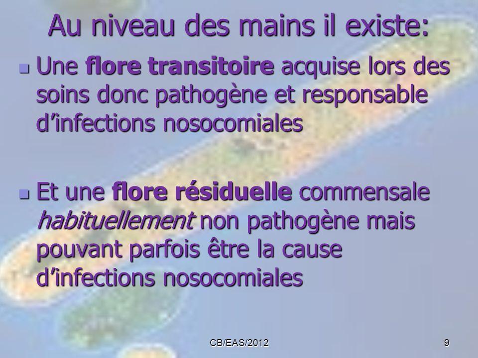 CB/EAS/20129 Au niveau des mains il existe: Une flore transitoire acquise lors des soins donc pathogène et responsable dinfections nosocomiales Une fl