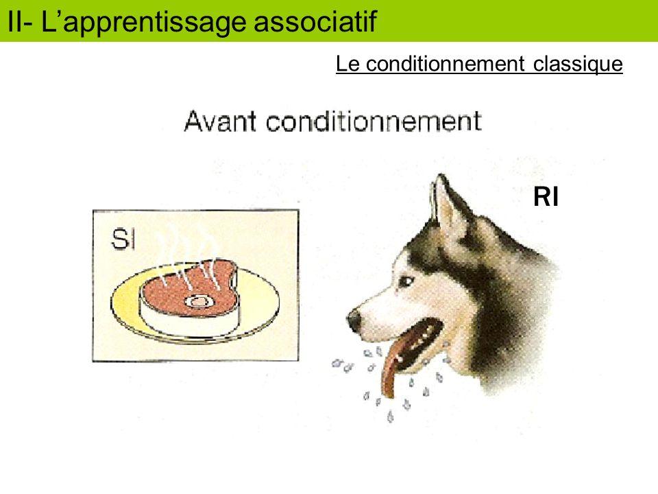 RI II- Lapprentissage associatif Le conditionnement classique