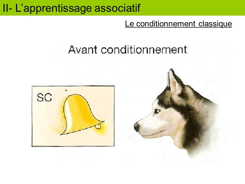SI SC II- Lapprentissage associatif Le conditionnement classique
