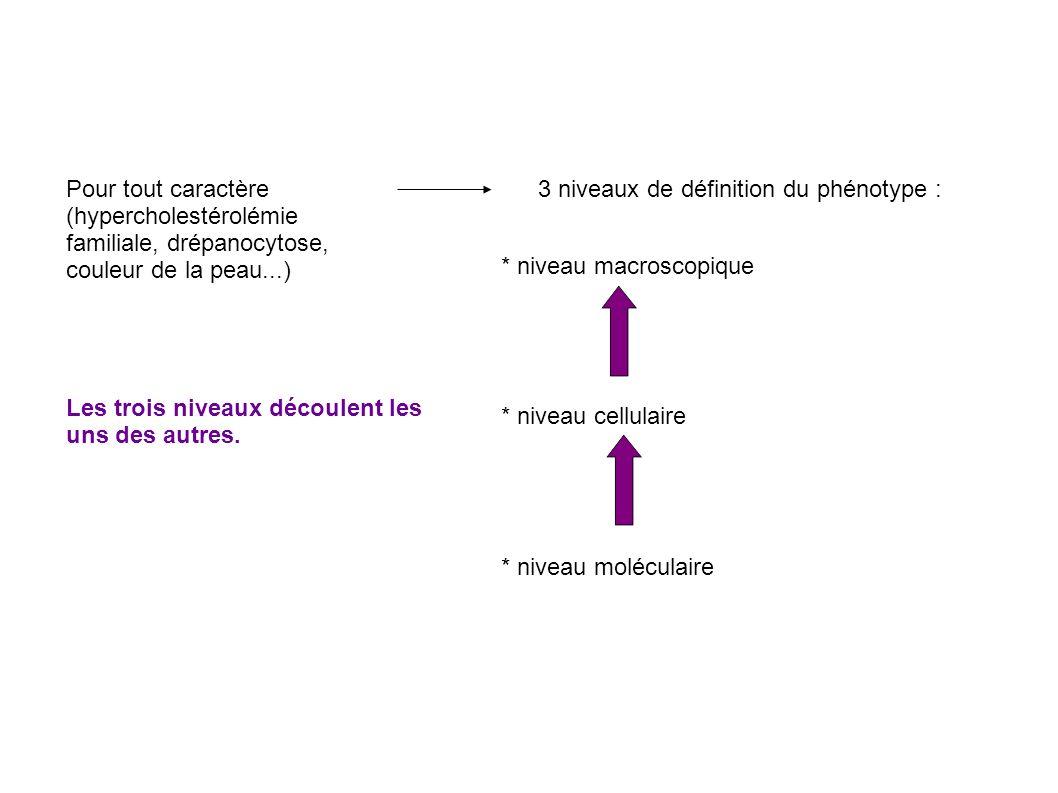 Pour tout caractère (hypercholestérolémie familiale, drépanocytose, couleur de la peau...) 3 niveaux de définition du phénotype : * niveau macroscopique * niveau cellulaire * niveau moléculaire Les trois niveaux découlent les uns des autres.