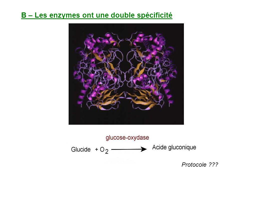 B – Les enzymes ont une double spécificité Protocole ???