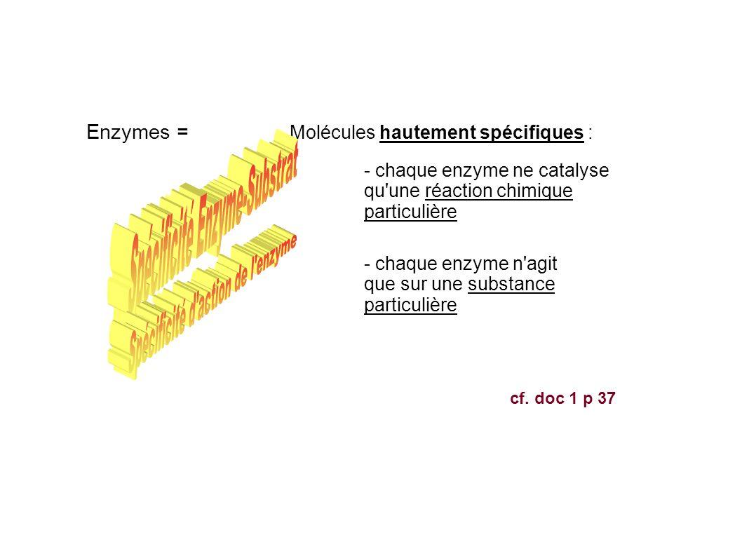 Molécules hautement spécifiques : - chaque enzyme ne catalyse qu une réaction chimique particulière - chaque enzyme n agit que sur une substance particulière Enzymes = cf.