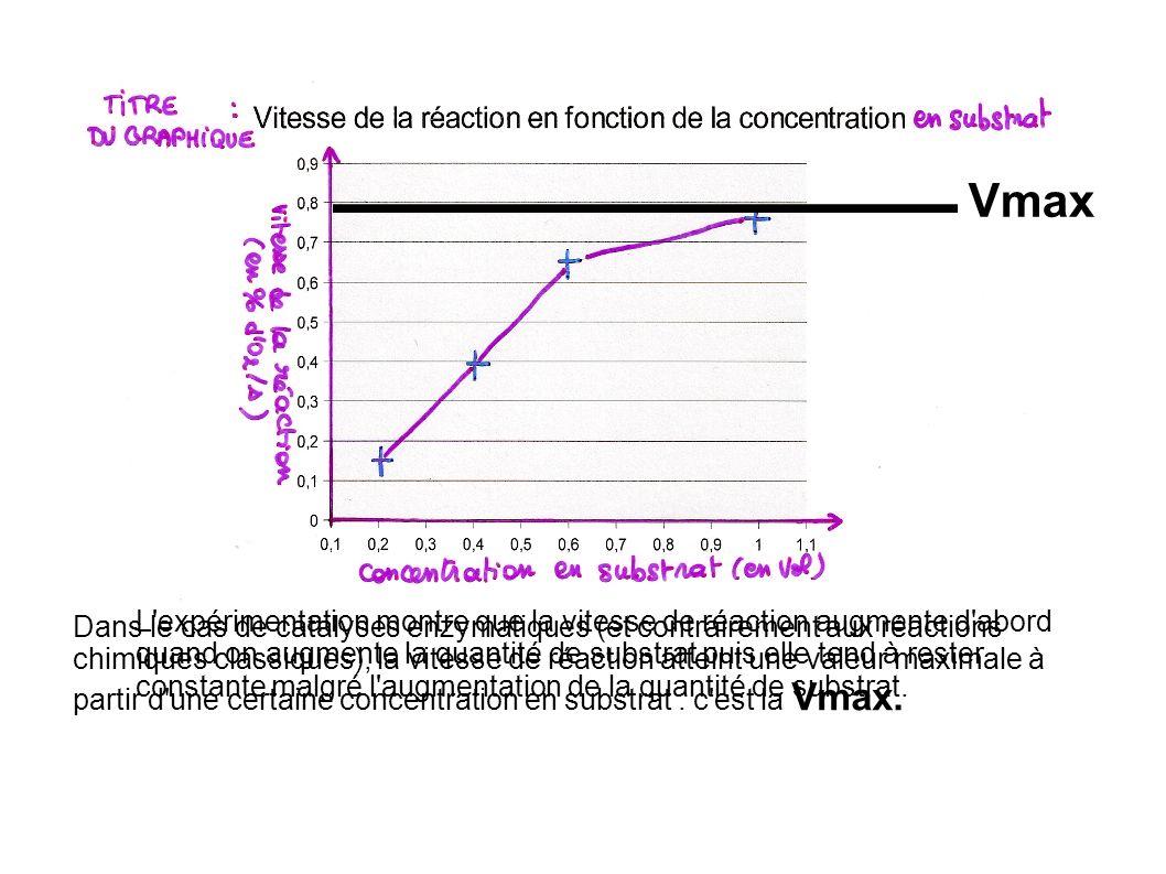 Vmax L expérimentation montre que la vitesse de réaction augmente d abord quand on augmente la quantité de substrat puis elle tend à rester constante malgré l augmentation de la quantité de substrat.