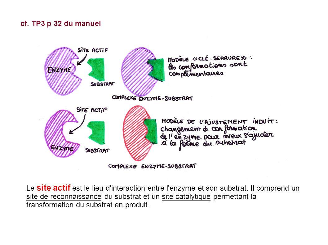 cf.TP3 p 32 du manuel Le site actif est le lieu d interaction entre l enzyme et son substrat.