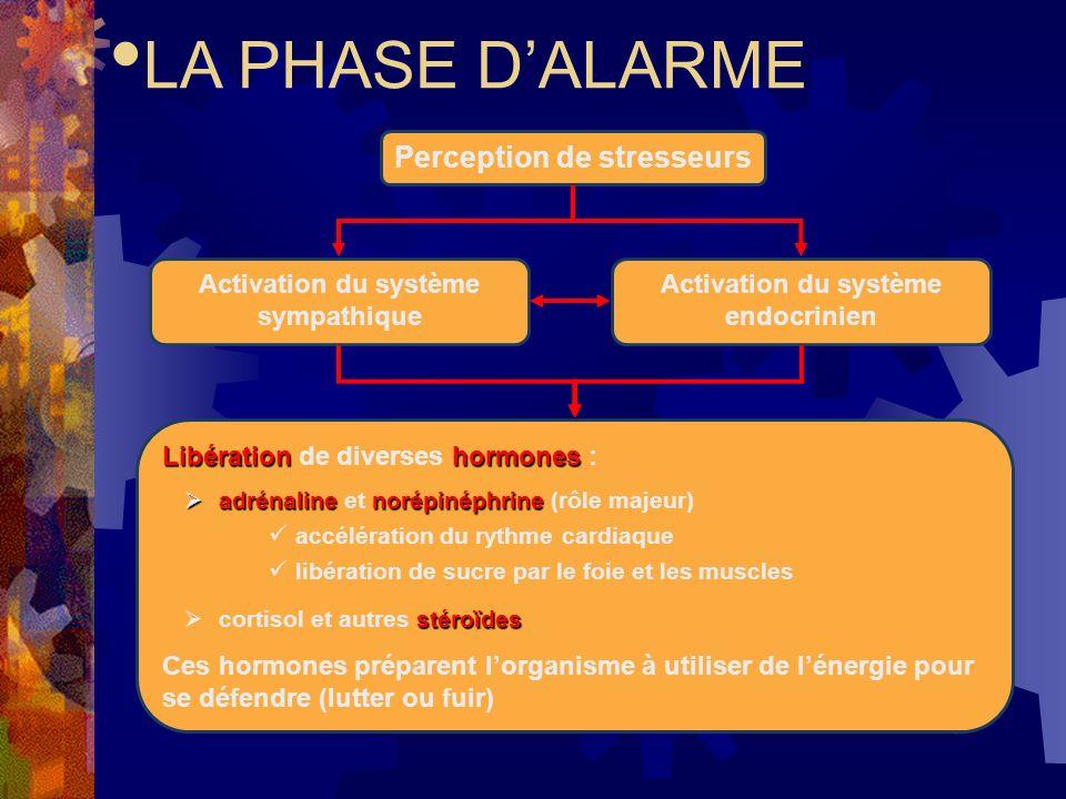 Phase dalarme Déclencheur: agent stressant Caractéristiques: activation du système nerveux sympathique But: préparer lorganisme à affronter le stress