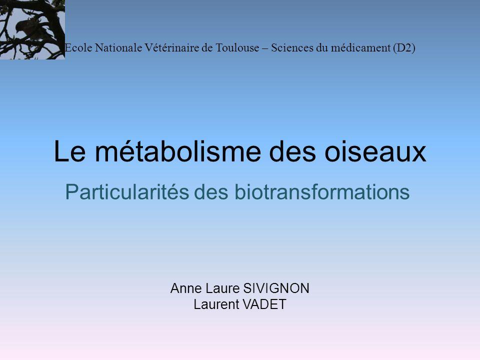 Le métabolisme des oiseaux Particularités des biotransformations Anne Laure SIVIGNON Laurent VADET Ecole Nationale Vétérinaire de Toulouse – Sciences