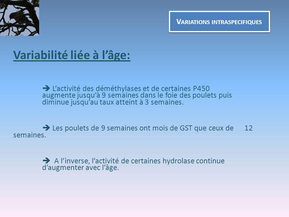 V ARIATIONS INTRASPECIFIQUES Variabilité liée à lâge: Lactivité des déméthylases et de certaines P450 augmente jusquà 9 semaines dans le foie des poul
