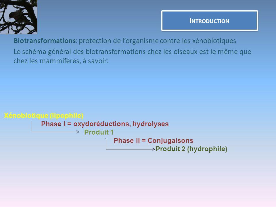 I NTRODUCTION Biotransformations: protection de lorganisme contre les xénobiotiques Le schéma général des biotransformations chez les oiseaux est le m