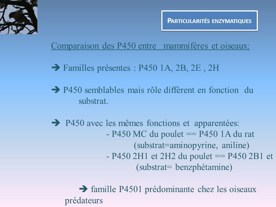 P ARTICULARITÉS ENZYMATIQUES Comparaison des P450 entre mammifères et oiseaux: Familles présentes : P450 1A, 2B, 2E, 2H P450 semblables mais rôle diff